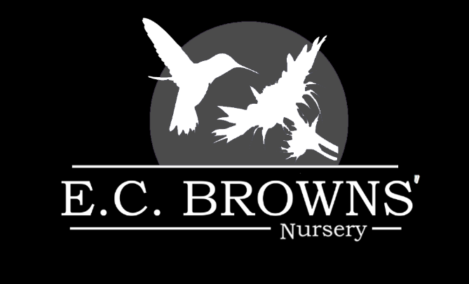 e.c.browns.nursery
