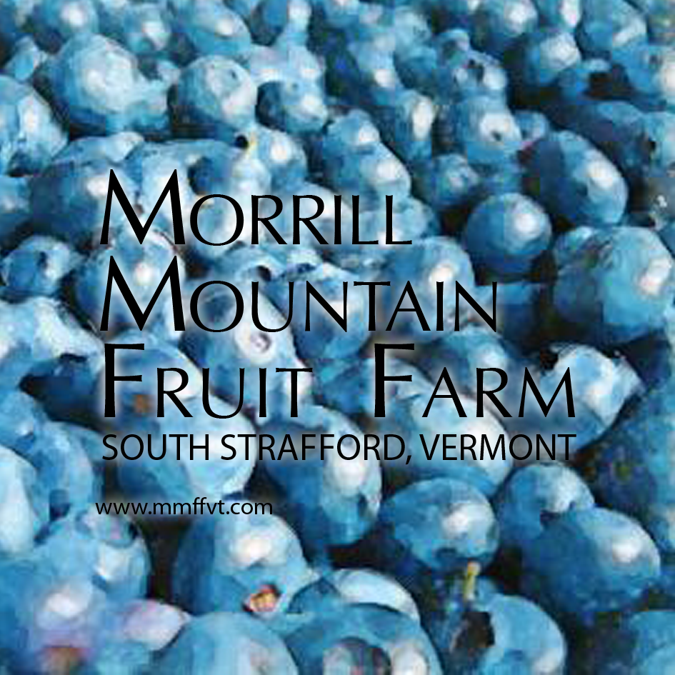 morrill.mountain.fruit.farm.blueberries